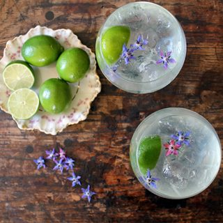 Classic Gin Rickey Cocktail