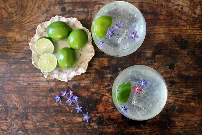 Overhead shot of two glasses of classic Gin Rickey Cocktail with a plate of limes and edible flowers.