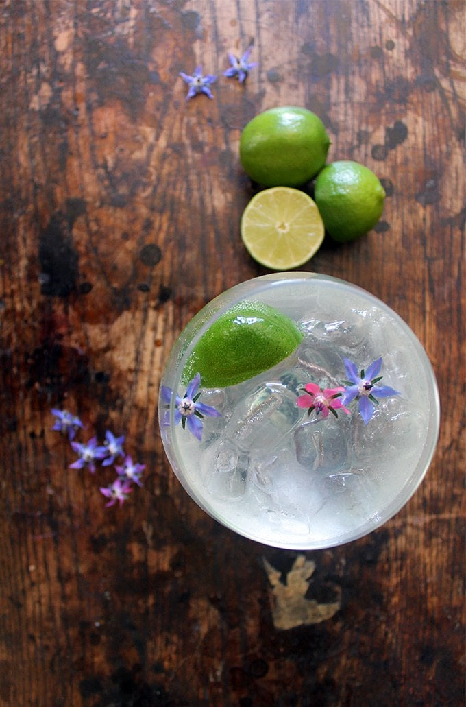 Overhead image of a glass of ice and gin rickey cocktail with a wedge of lime and edible flowers.