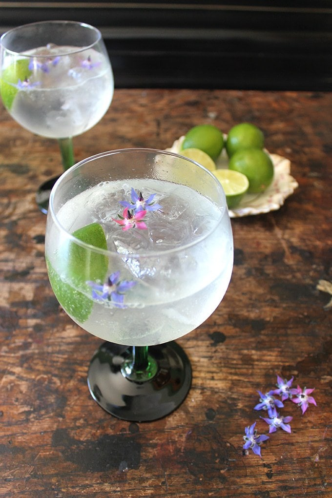 Close up of two glasses of classic Gin Rickey Cocktail with fresh lime and edible flowers in the glasses.
