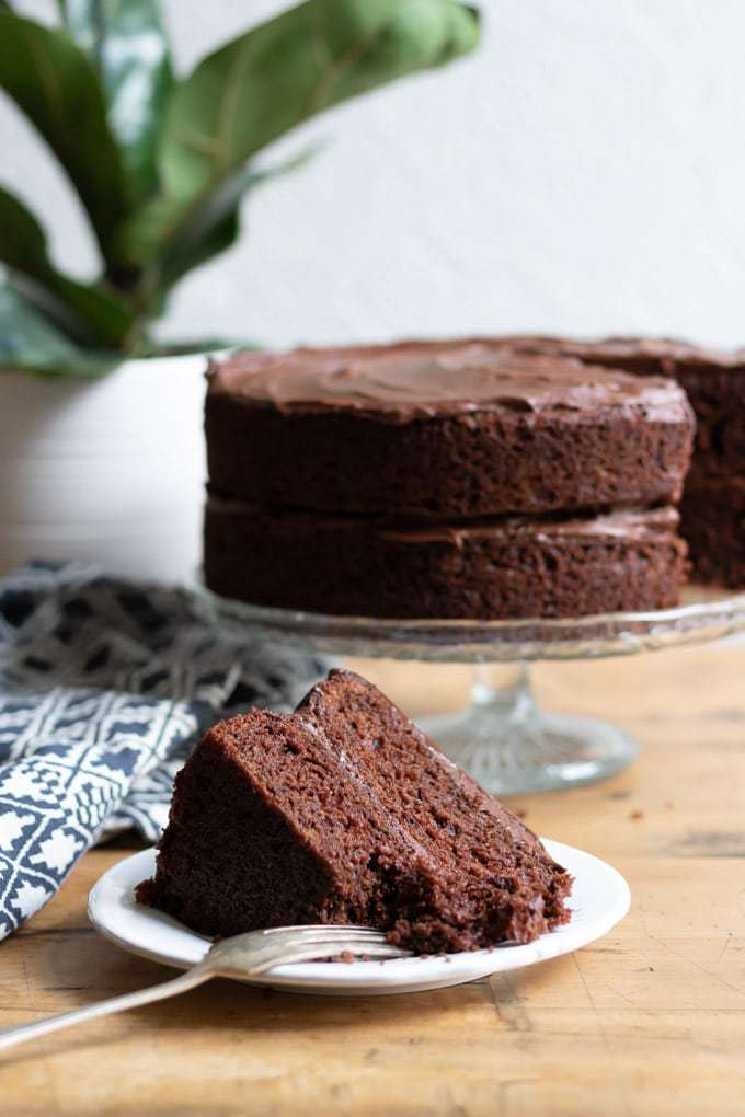 A slice of chocolate vegan cake in front of a vegan chocolate cake on a cake stand in front of a plant. Get the recipe now.