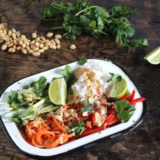 Vegan Noodle Salad with Peanut Sauce {Heck Thai Bites}