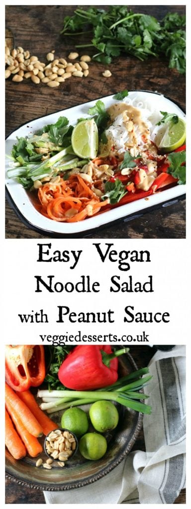 Vegan Noodle Salad with Peanut Sauce. This Asian inspired bowl salad is quick, easy and tasty. The rice noodles are mixed with carrot, spring onions (scallions), red pepper then topped with the peanut dressing, chili and fresh lime juice. #vegan #vegansalad #veganmeals #noodlebowl