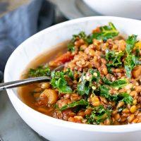 Close up of a bowl of vegan lentil stew recipe