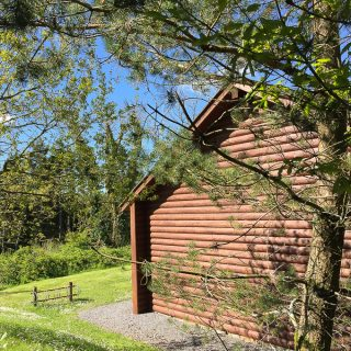Bluestone Wales Review - Outside of a log cabin in the beautiful Pembrokeshire forest on a sunny day.