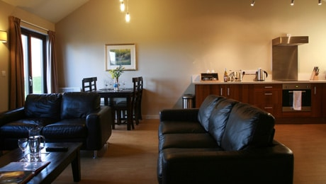 Cladey Lodge living area. Bluestone
