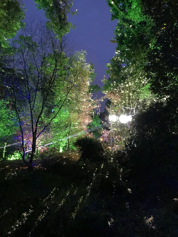 The Dingly Dell forest play area at night - Camp Bestival Review 2018