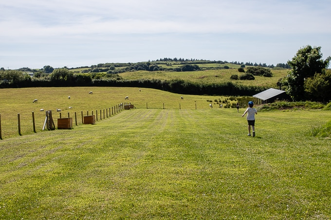 Feather Down Ilfracombe Farm - glamping in Devon
