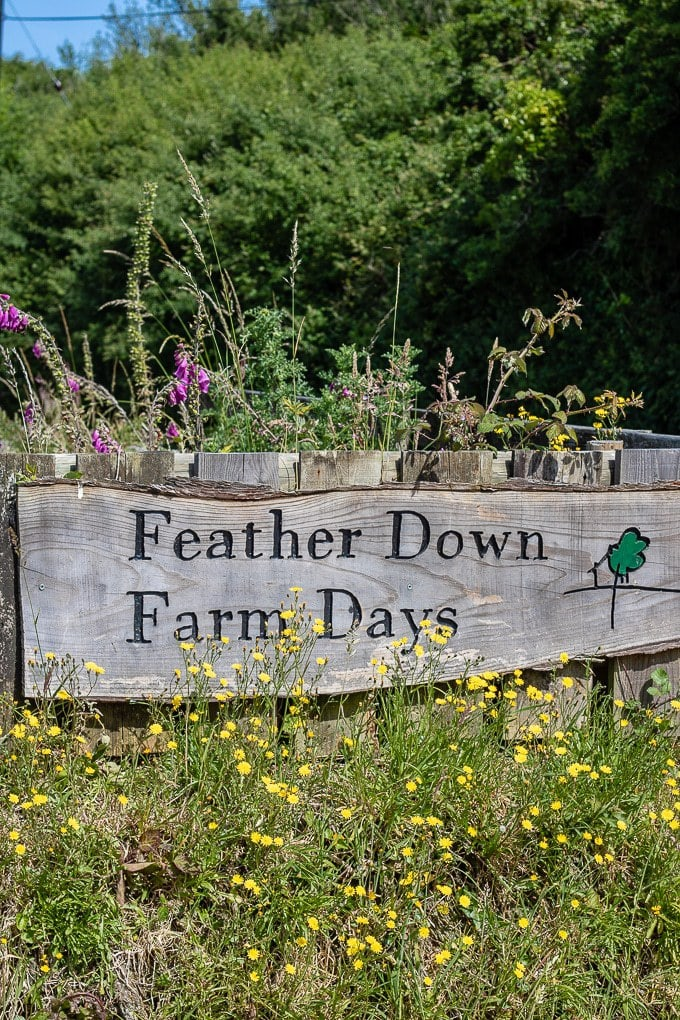 Wooden sign for Feather Down Farm Stays - Ilfracombe Devon glamping
