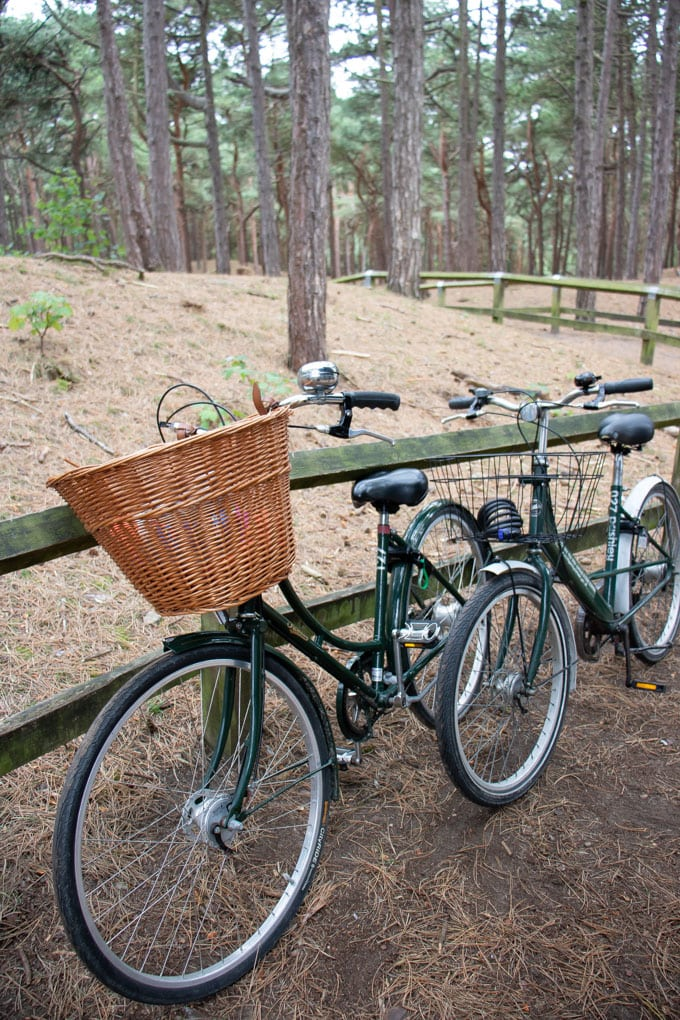 Cycle Hire at Southport Eco Centre