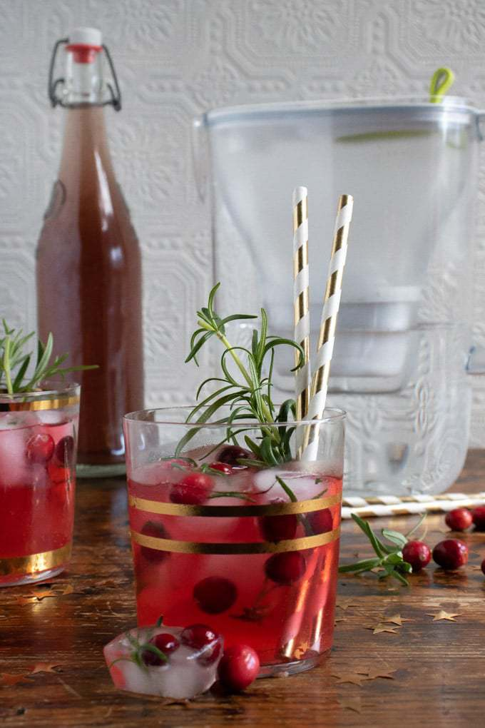 Close up glass of kombucha mocktail with cranberry rosemary ice cubes. Bottle of kombucha and a water filter are in the background. Get the recipe.