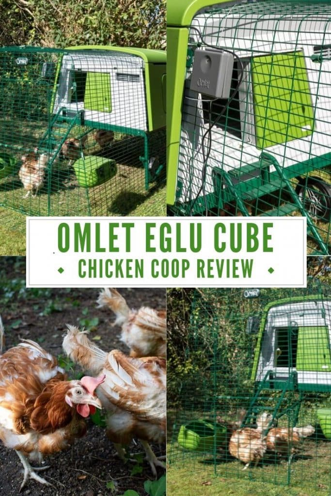 pinnable image for Omlet Eglu Cube Review