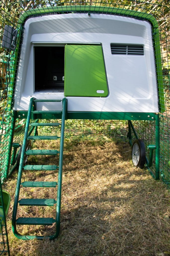 Inside the run of the Omlet Eglu Cube chicken coop