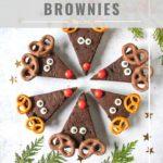 pinnable image for avocado reindeer brownies