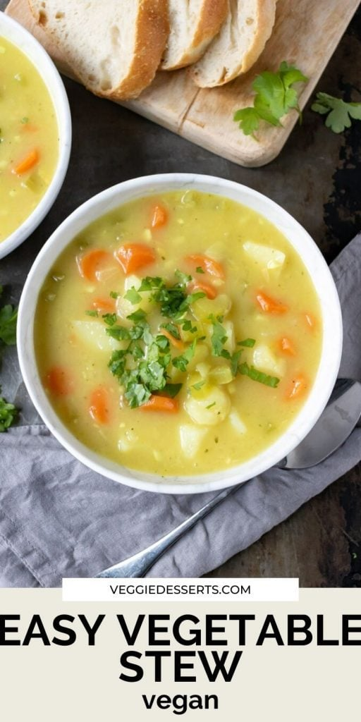 Pinnable image for vegetable vegan stew recipe - bowl of stew with text overlay.