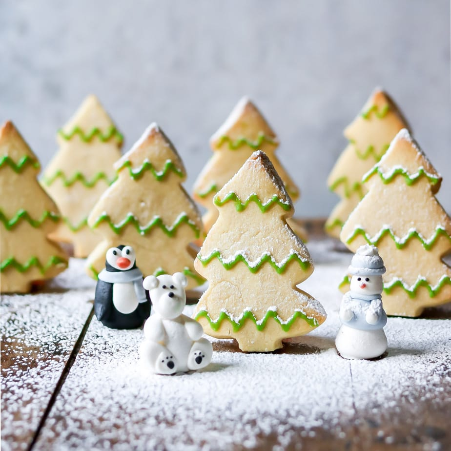 Tree shaped cookies stood up with powdered sugar snow.