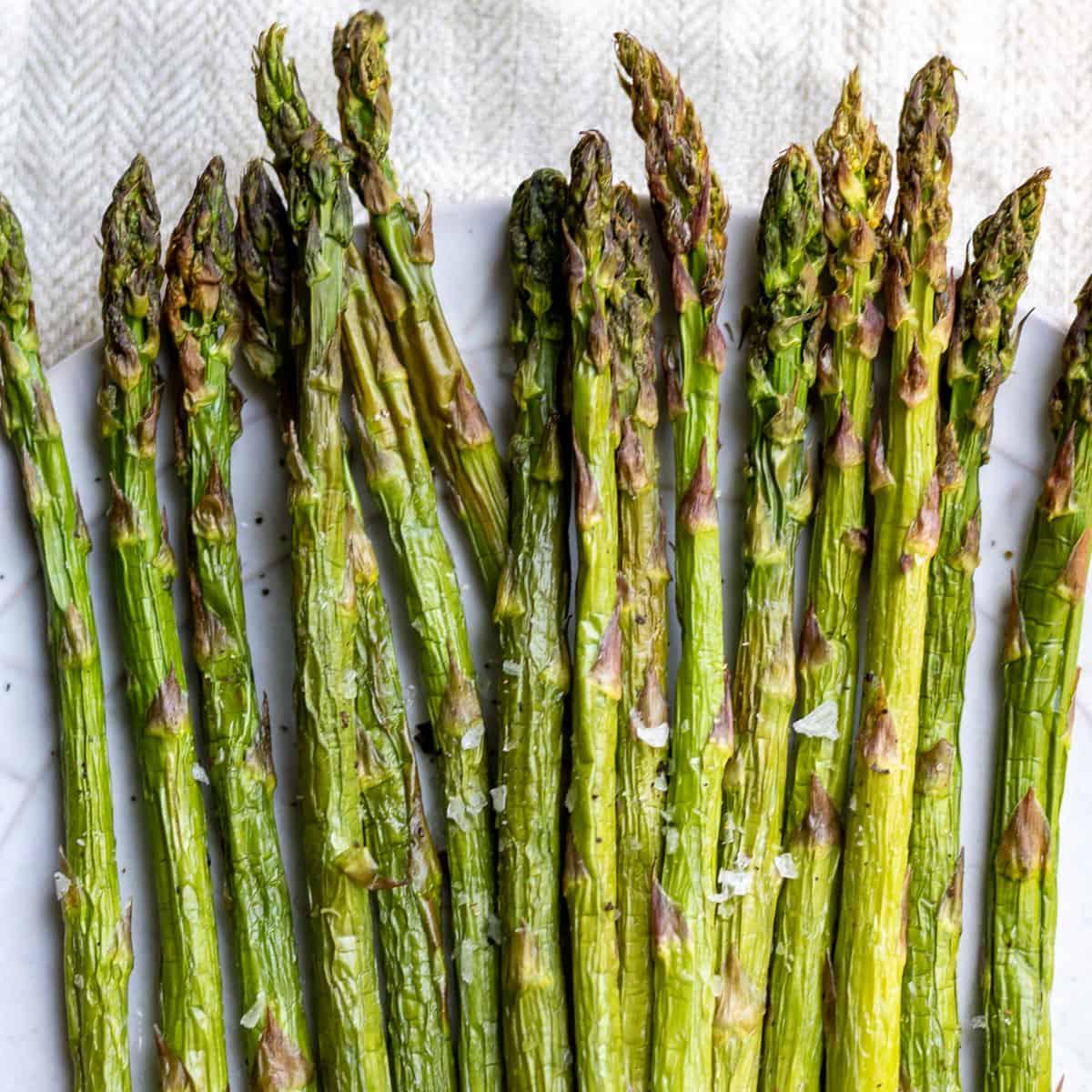 Rows of asparagus.