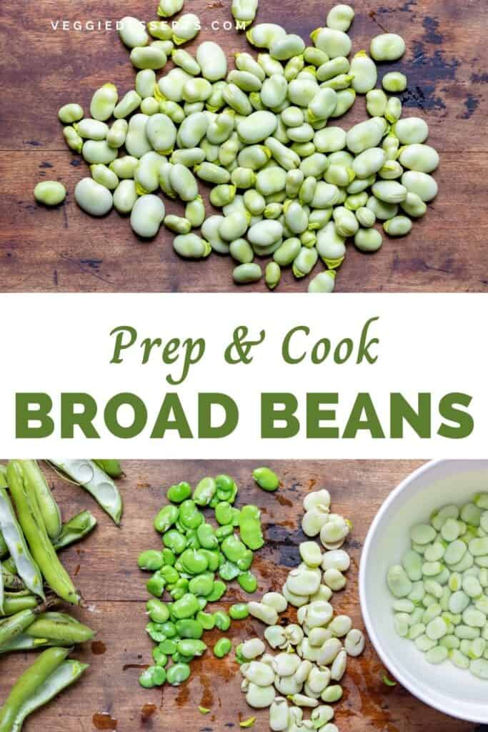 Piles of broad beans, with text: Prep and Cook Broad Beans.