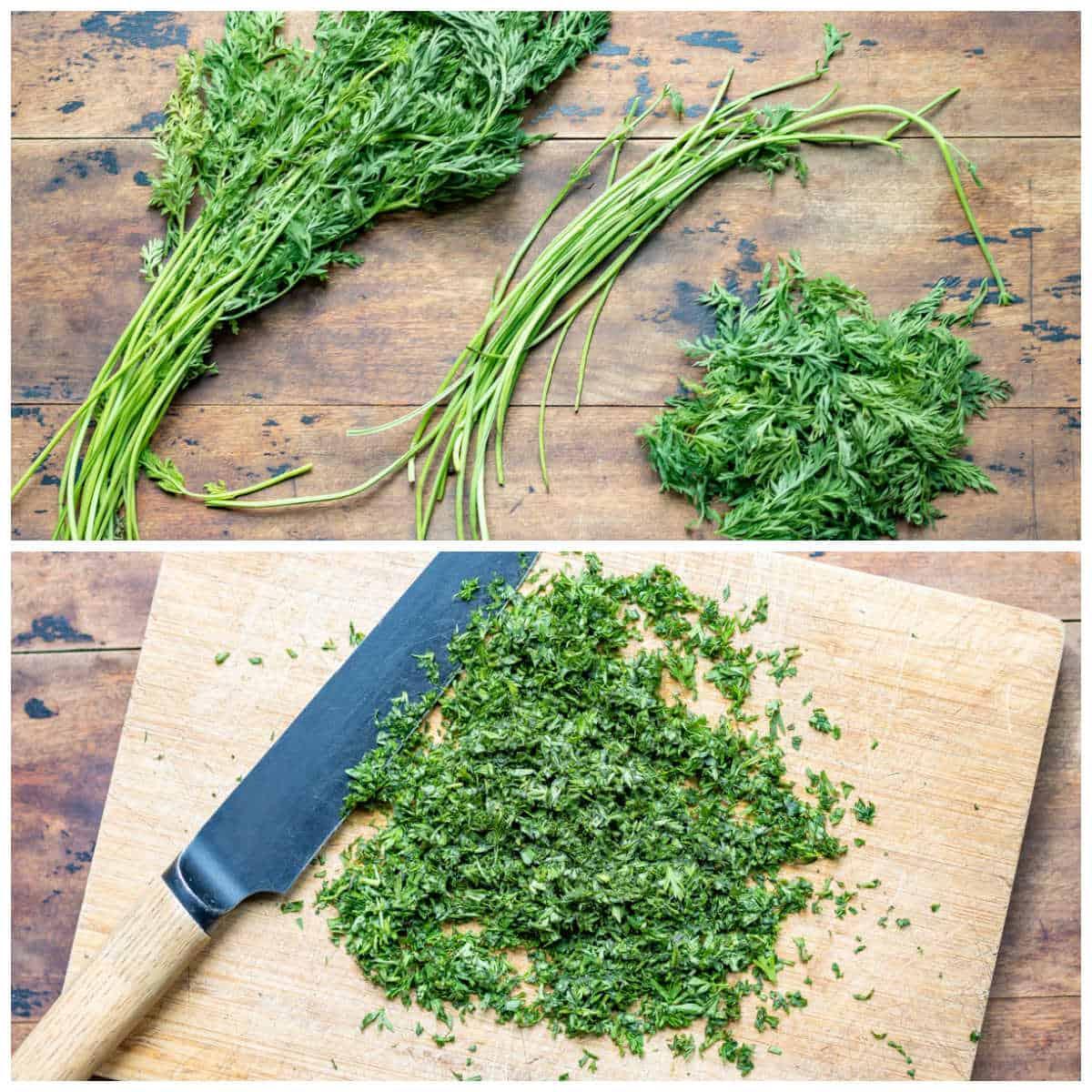 Chopped carrot greens.