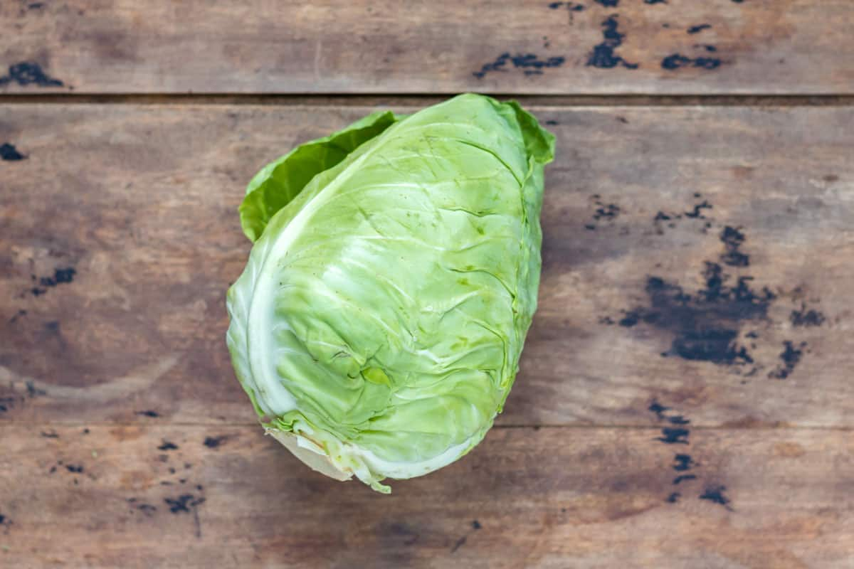 Pointed cabbage on a wooden table.